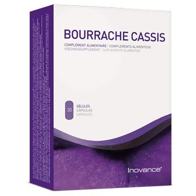 Bourrache Cassis - YSONUT